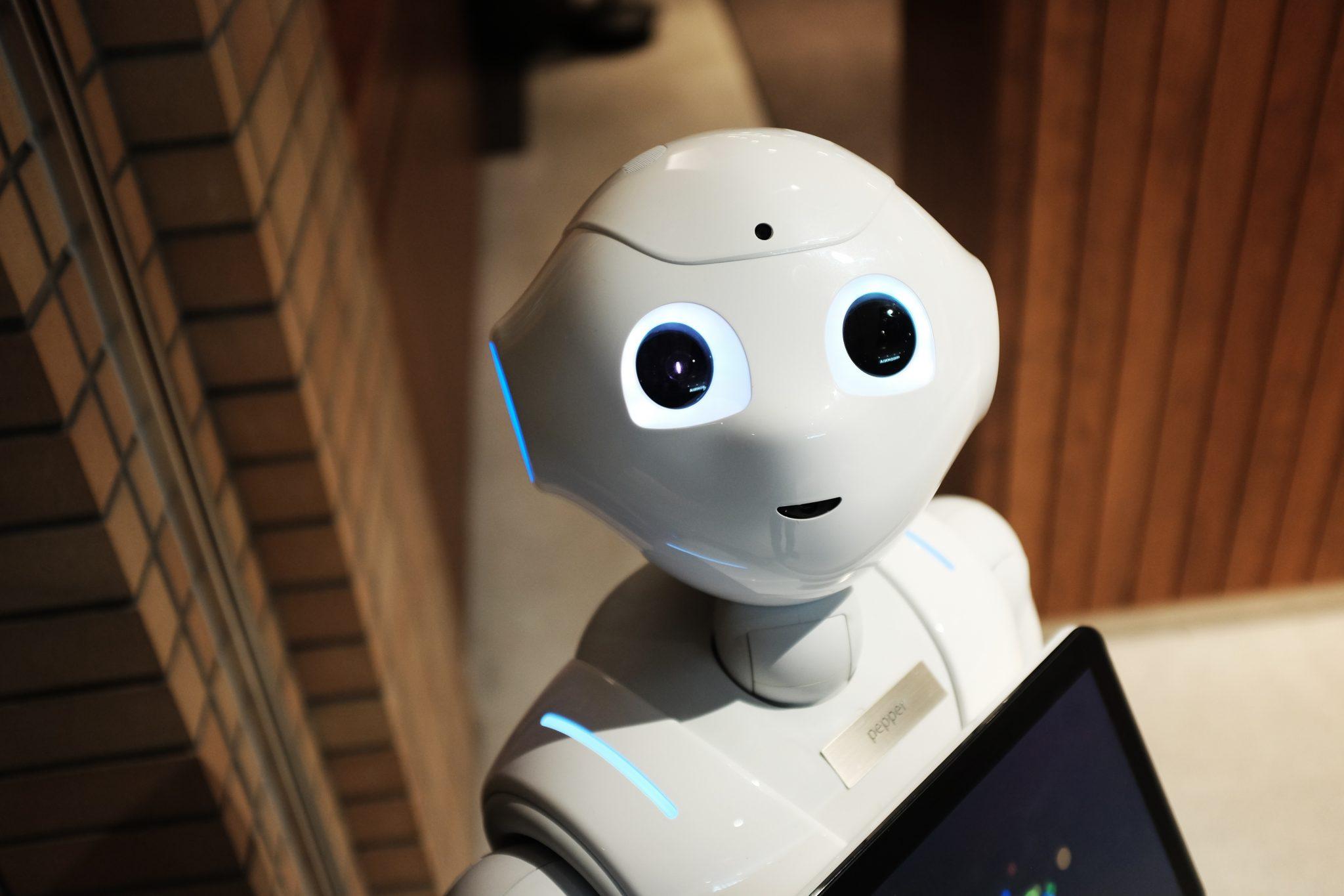 רובוט - מנוע חיפוש